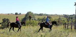 First Dates- Horseback Riding